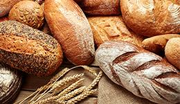 トレメルガム(白キクラゲ多糖)の製パン分野での応用事例